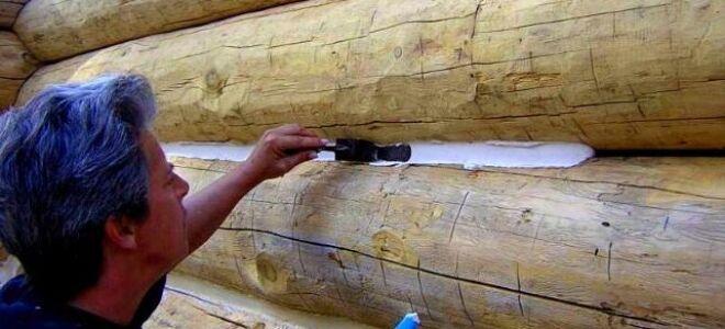 Как выбрать замазку для дерева