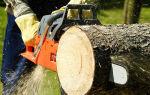 Как правильно выполнить распил дерева?