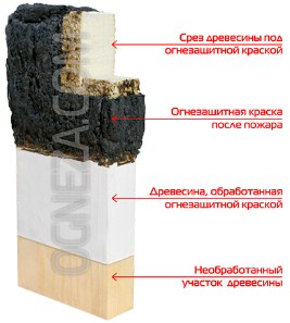 ognezashchitnaya-kraska_1