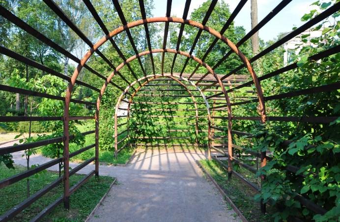 арка Пергола